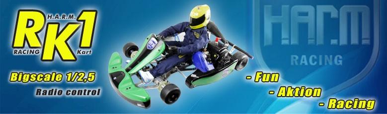 RK-1 Racing Kart